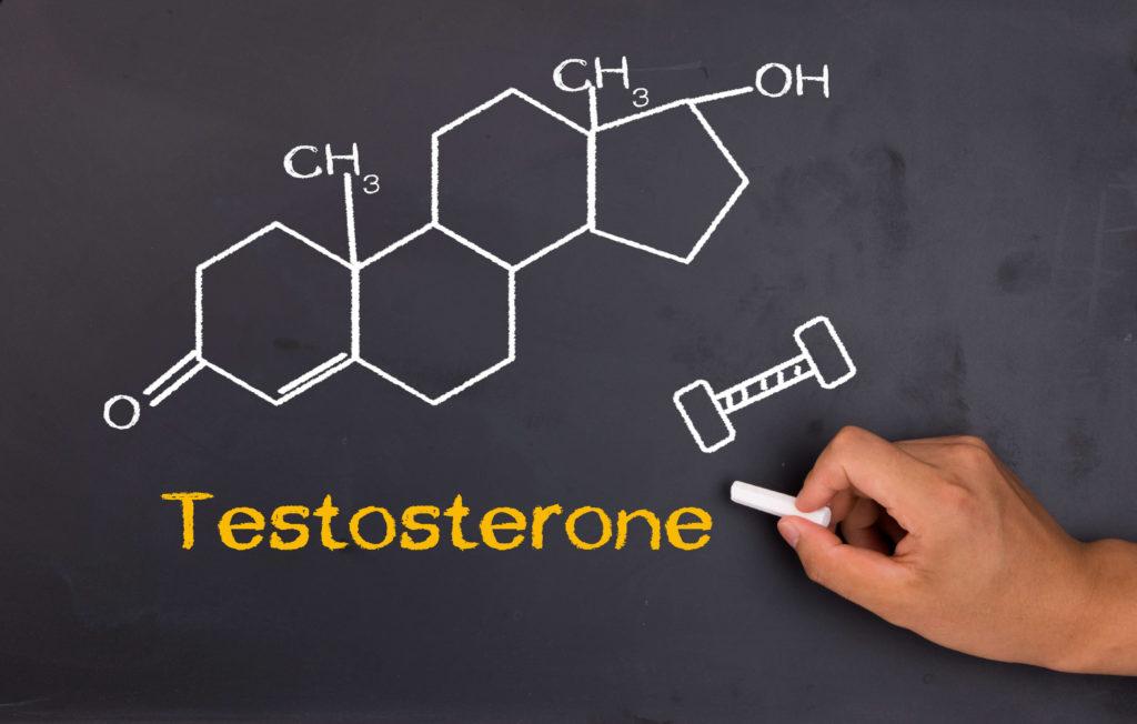 Тестостерон – самый мощный сжигатель жира в нашем организме